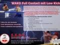 56_Flyer-WAKO-Full2016